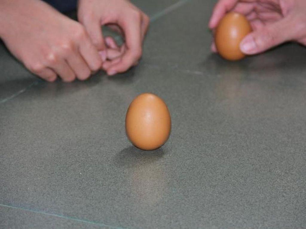 Ajaibnya Pontianak, Ada Telur Bisa Berdiri Tegak