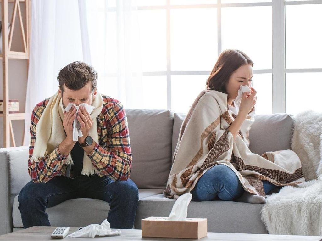 Simpel Banget, Ini 4 Cara Hentikan Hidung Meler Ala Rumahan