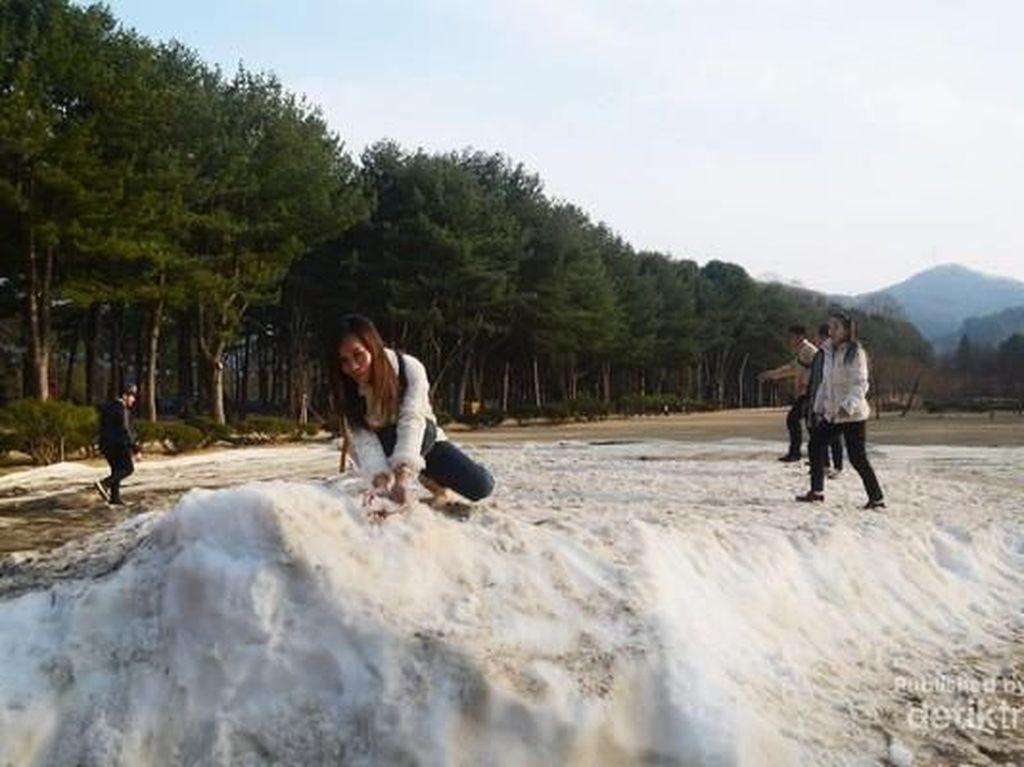 Ini Rasanya Main Salju di Korea Selatan