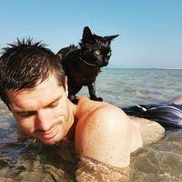 Nathan berenang bersama pemiliknya (nathan_thebeachcat/Instagram)