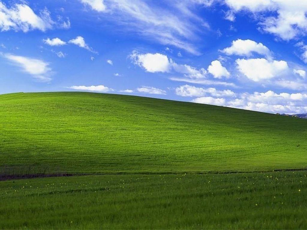 Wallpaper Legendaris Windows XP Ini Harganya Mengejutkan