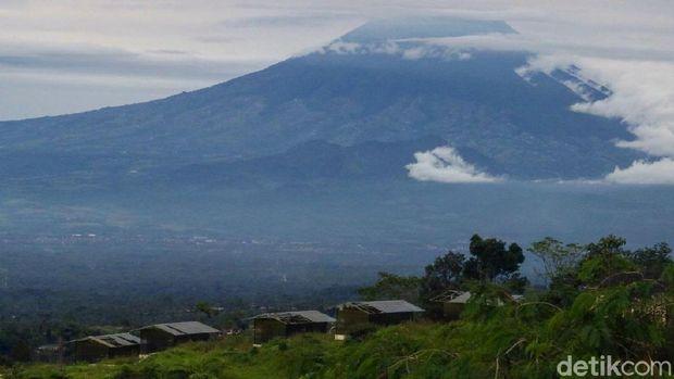 Pemandangan Gunung Merapi dari Ketep Pass (Pertiwi/detikTravel)