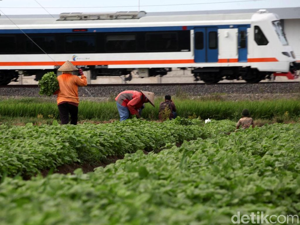 Catat! Ini Jadwal dan Tarif Kereta Bandara Soetta dari Bekasi