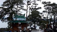 Rumah pohon yang memiliki cafe (Chaidir/detikTravel)
