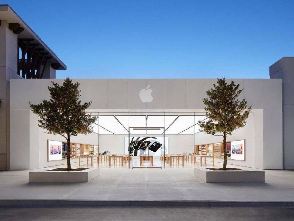 Apple Polisikan 12 Karyawan, Ada Apa?