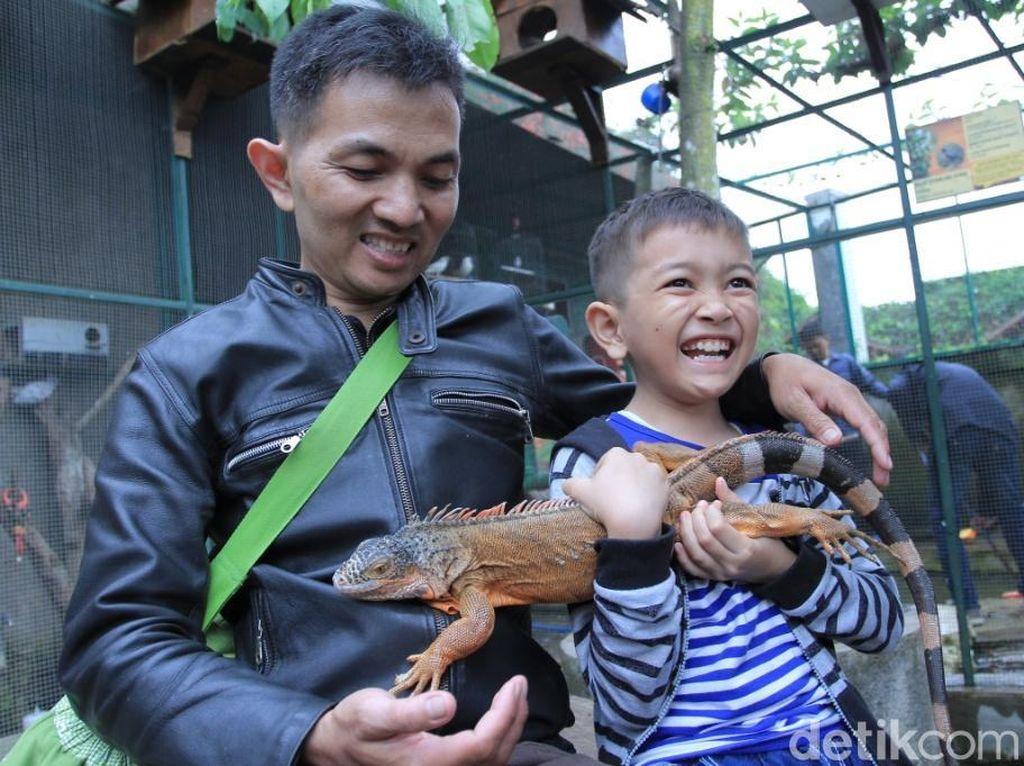 Foto: Ide Libur Akhir Pekan, Kebun Binatang Mini di Lembang