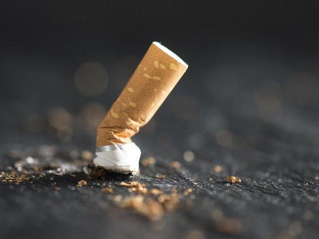 Petani Minta Kenaikan Cukai Rokok Ditunda