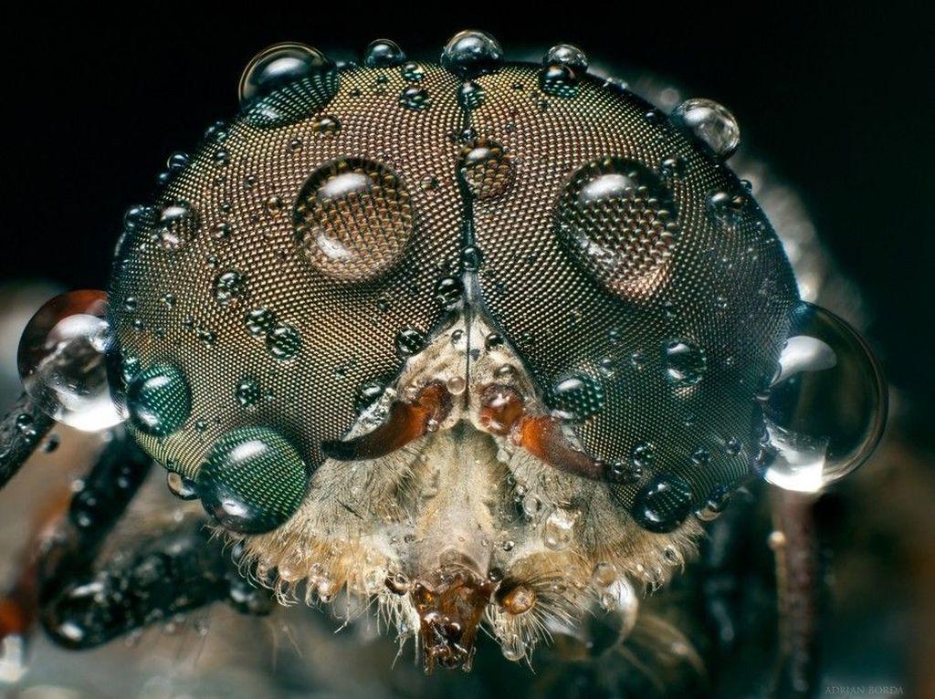 Squirt Sensasional Dari Cipratan Air Gairah Hidup, Yang Berhasil Di Abadikan