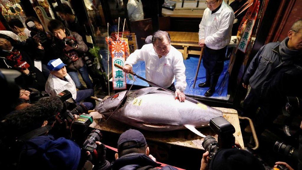 Wow! Ikan Tuna Ini Laku Dilelang Rp 4 M di Tsukiji Market Jepang