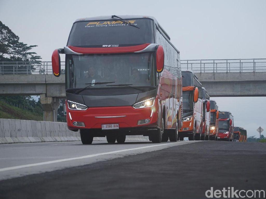 12 Bus Anyar Putera Mulya