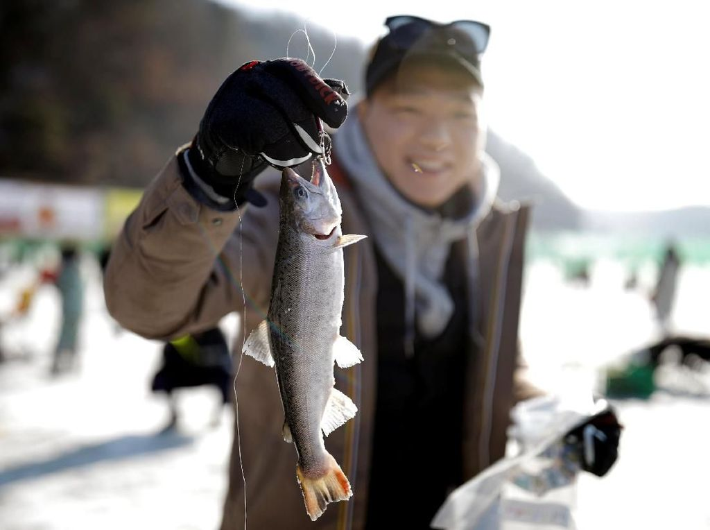 Kandungan Metamfetamin di Sungai Tenyata Bisa Bikin Ikan Kecanduan