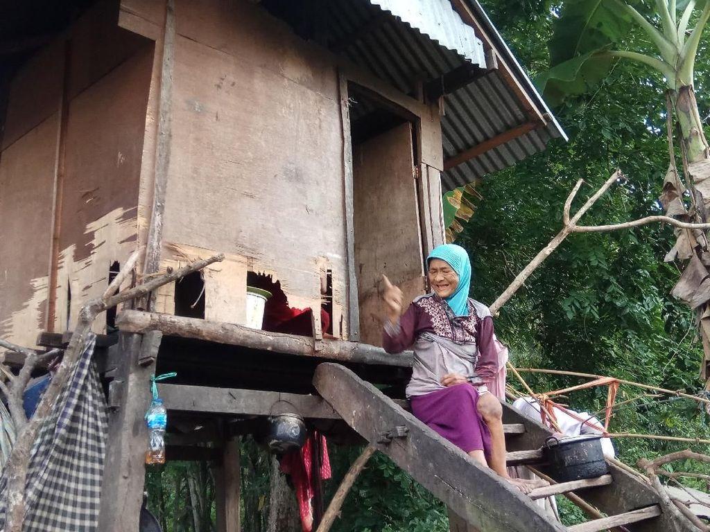 Kisah Nenek di Bone yang Tinggal di Gubuk Reyot Bersama Anaknya