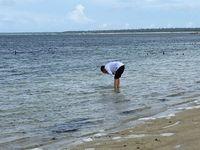 Presiden Jokowi saat mencuci muka di Pantai Nemberala (Ray Jordan/detikcom)