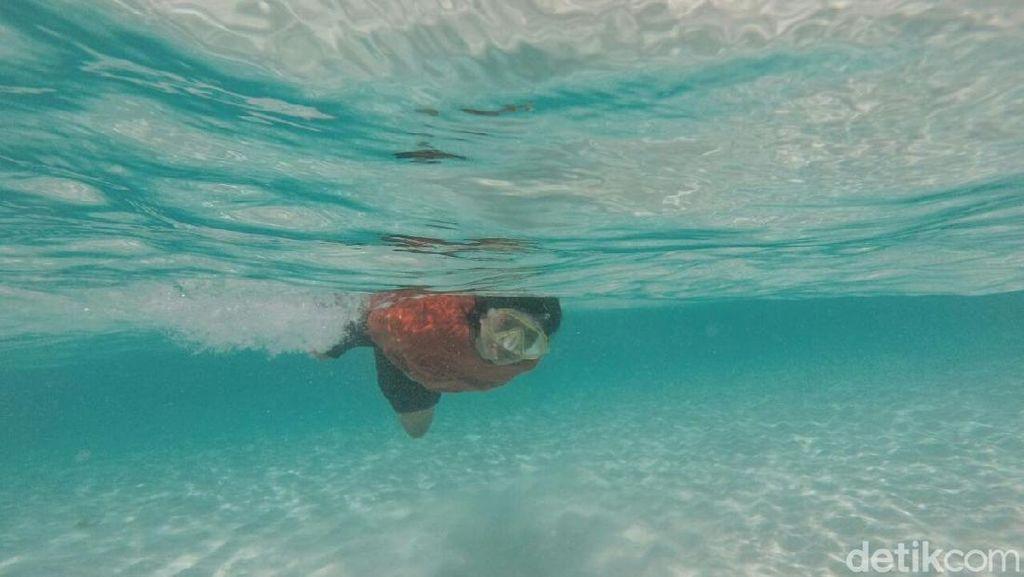 Foto: Snorkeling Asyik di Pulau Kapoposang