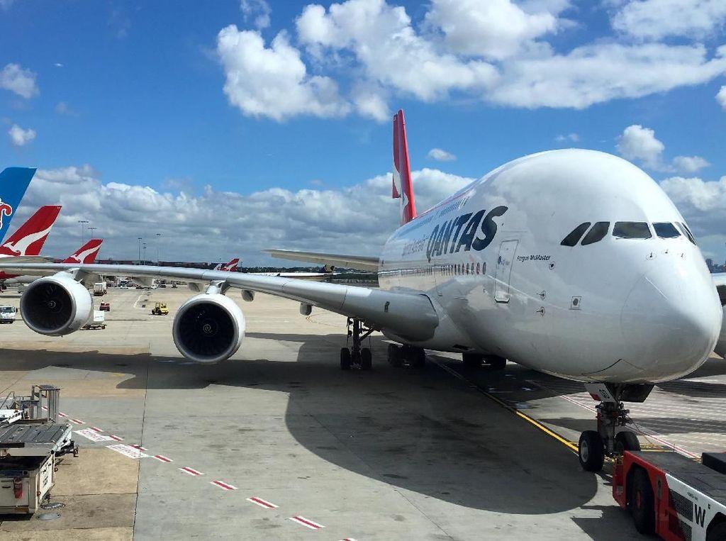 Terbang dari Perth, 100 Tas Penumpang Tertinggal di Sydney