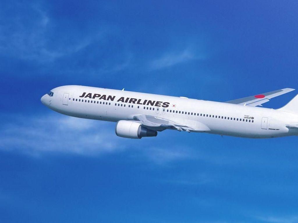 JAL Buka Penerbangan Tokyo - Australia Lagi, tapi Enggak PP