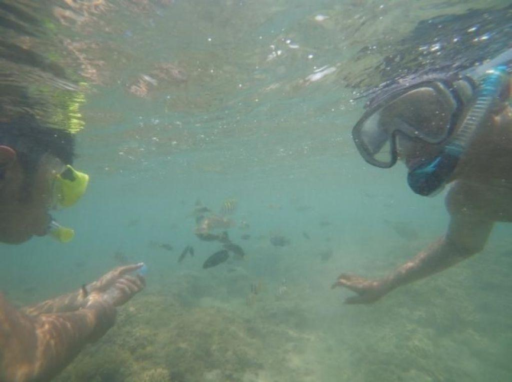 Oh Lombok, Kenapa Lautmu Begitu Indah?