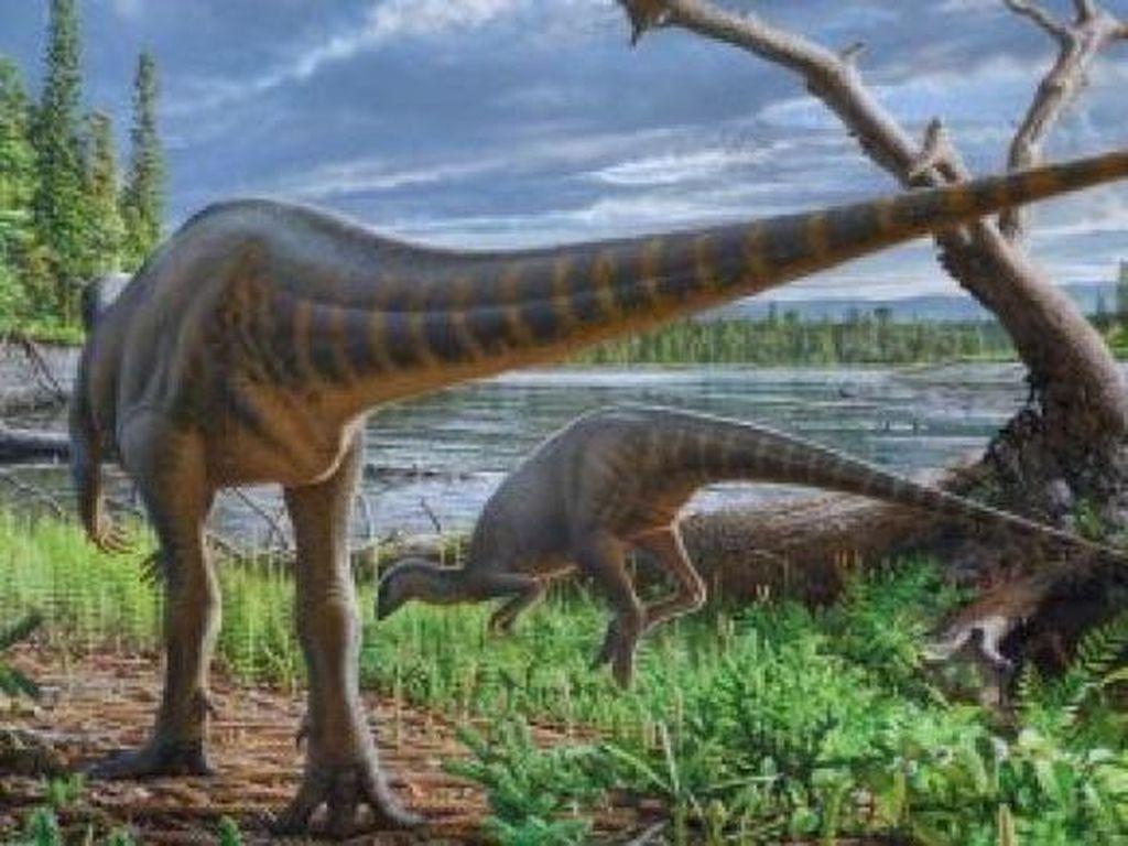 Temuan Dinosaurus Baru Seukuran Kalkun dari Australia