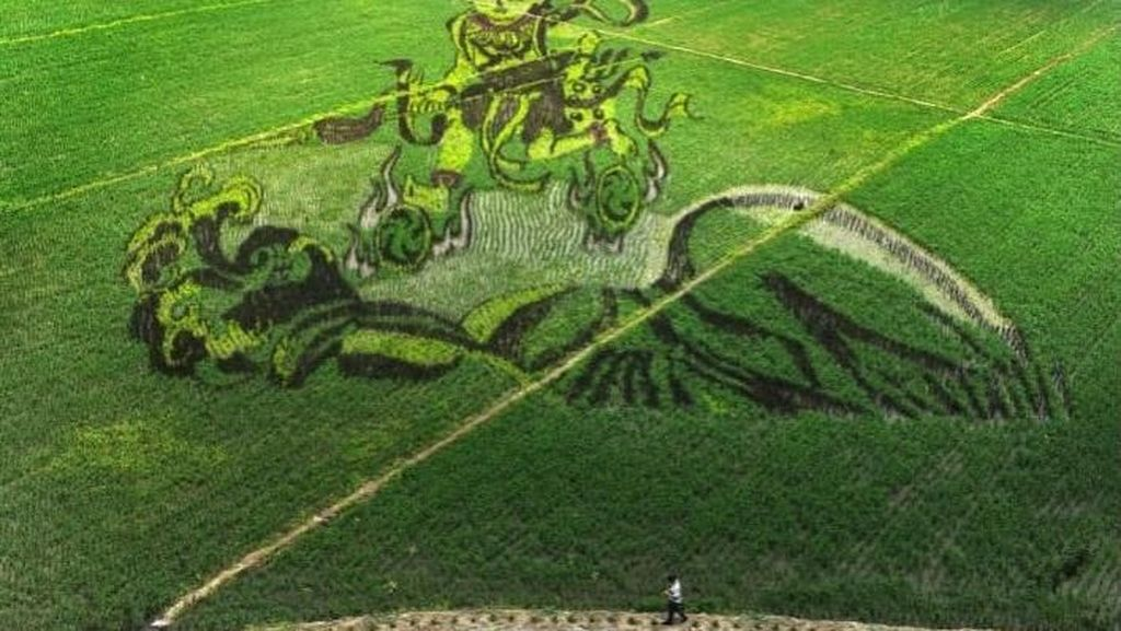 Keren! 10 Karya Seni yang Cantik Ini Dibuat di Atas Hamparan Sawah