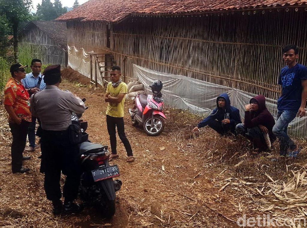 Warga Sukabumi Tolak Peternakan Ayam