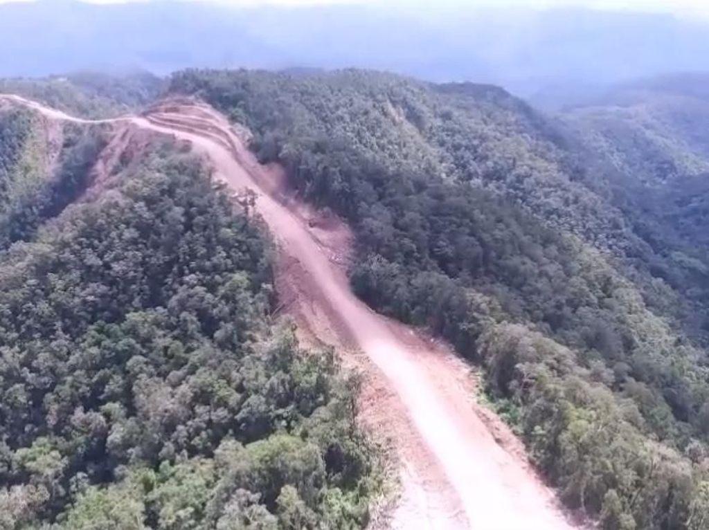 Begini Caranya Biar Hutan Nggak Gundul tapi Ekonomi Tetap Mantul