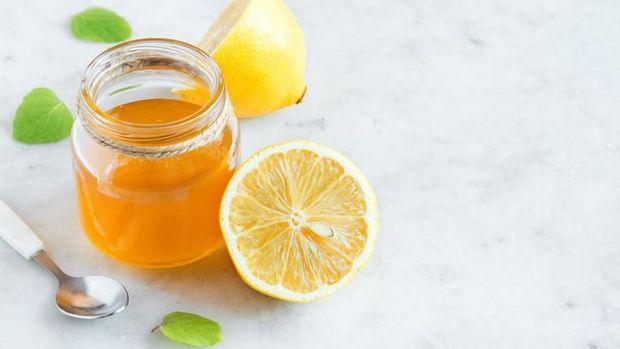 9 Bahan yang Bisa Usir Semut di Dapur