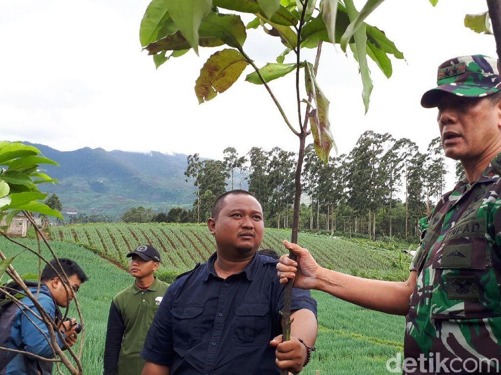 Hutan Tersisa 8,9 Persen, 125 Juta Pohon akan Ditanam di Hulu Citarum