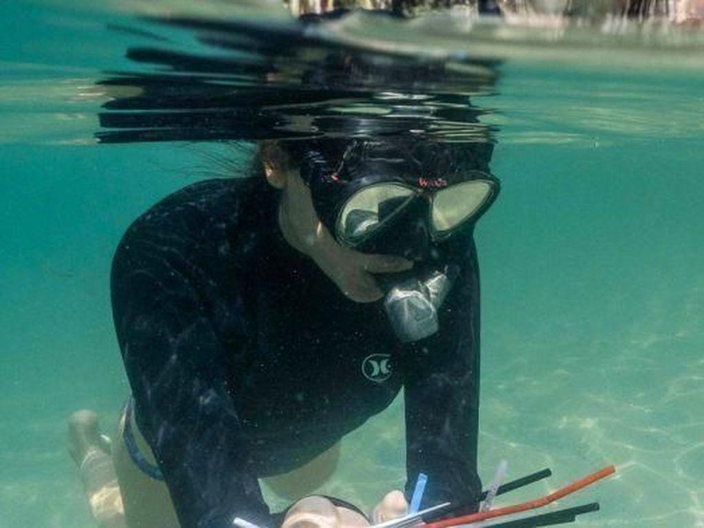 Sedotan Plastik Akan Dilarang di Kawasan Great Barrier Reef