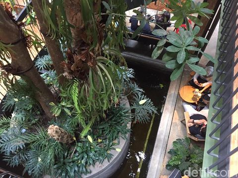 kayu-kayu, restoran gres yang instagramable di tangerang