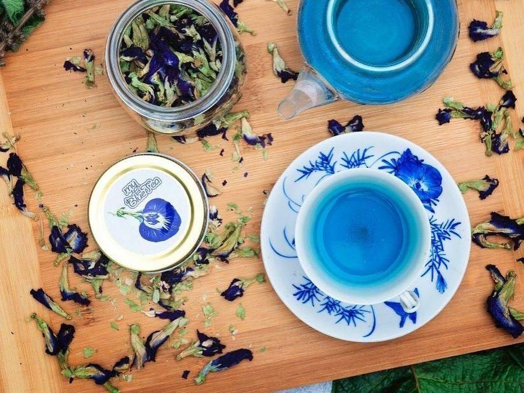 Pencinta Warna Biru, Wajib Lihat Nih 10 Sajian Cantik Ini!