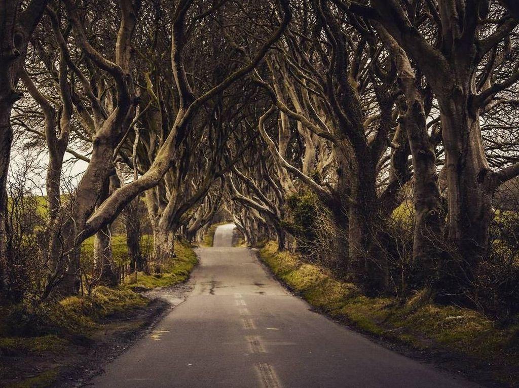 Foto: Jalanan Seram Tempat Syuting Game of Thrones