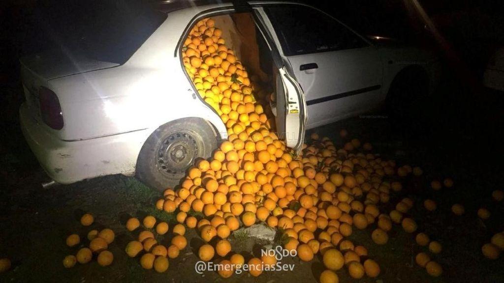 Mobil Berisi  4 Ton Jeruk Disetop Polisi, Ternyata Hasil Curian