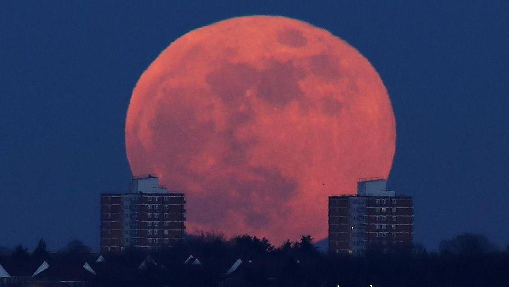 Foto: Super Blue Blood Moon di Langit London dan Madrid