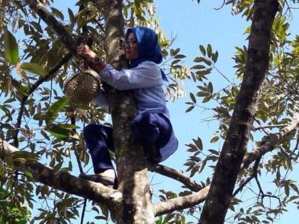 Di Lingkungan Pemkab Lebak, Bupati Iti Dikenal Suka Panjat Pohon