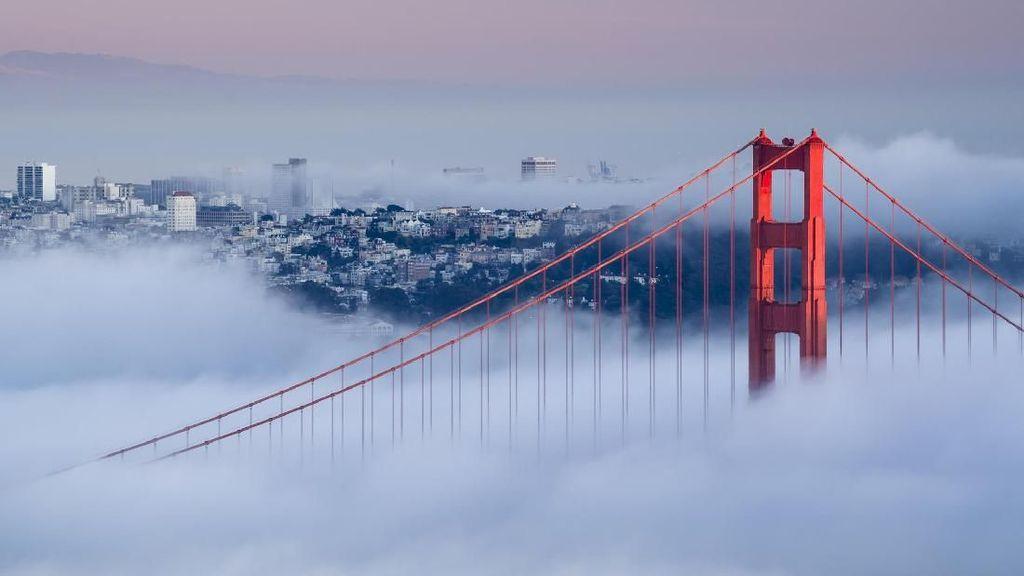 Foto: Jembatan Cantik dan Spektakuler di Berbagai Negara