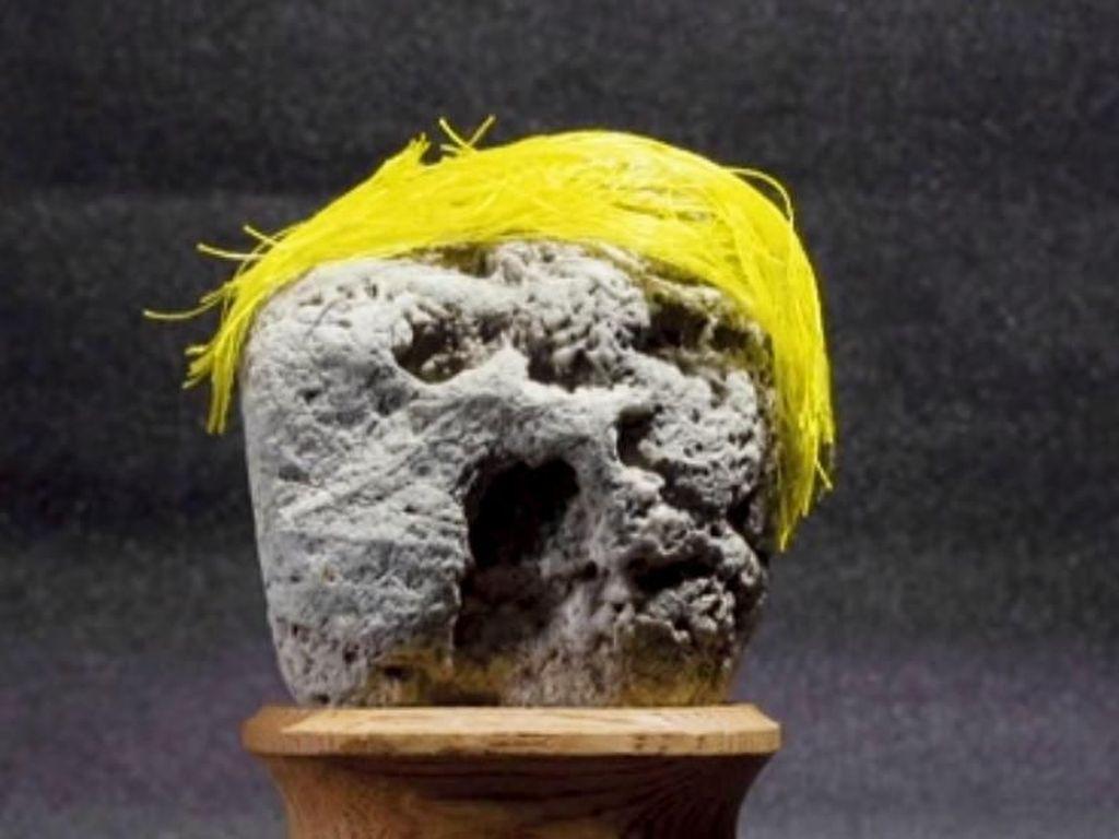Museum Ini Simpan Batu Bentuk Wajah, Ada yang Mirip Donald Trump