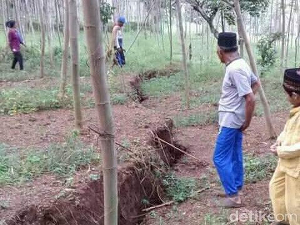 Tanah Retak dan Ambles Bahayakan 33 Rumah Warga di Jember