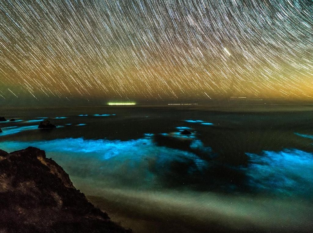 Menakjubkan! Saat Pesisir California Bercahaya karena Fitoplankton