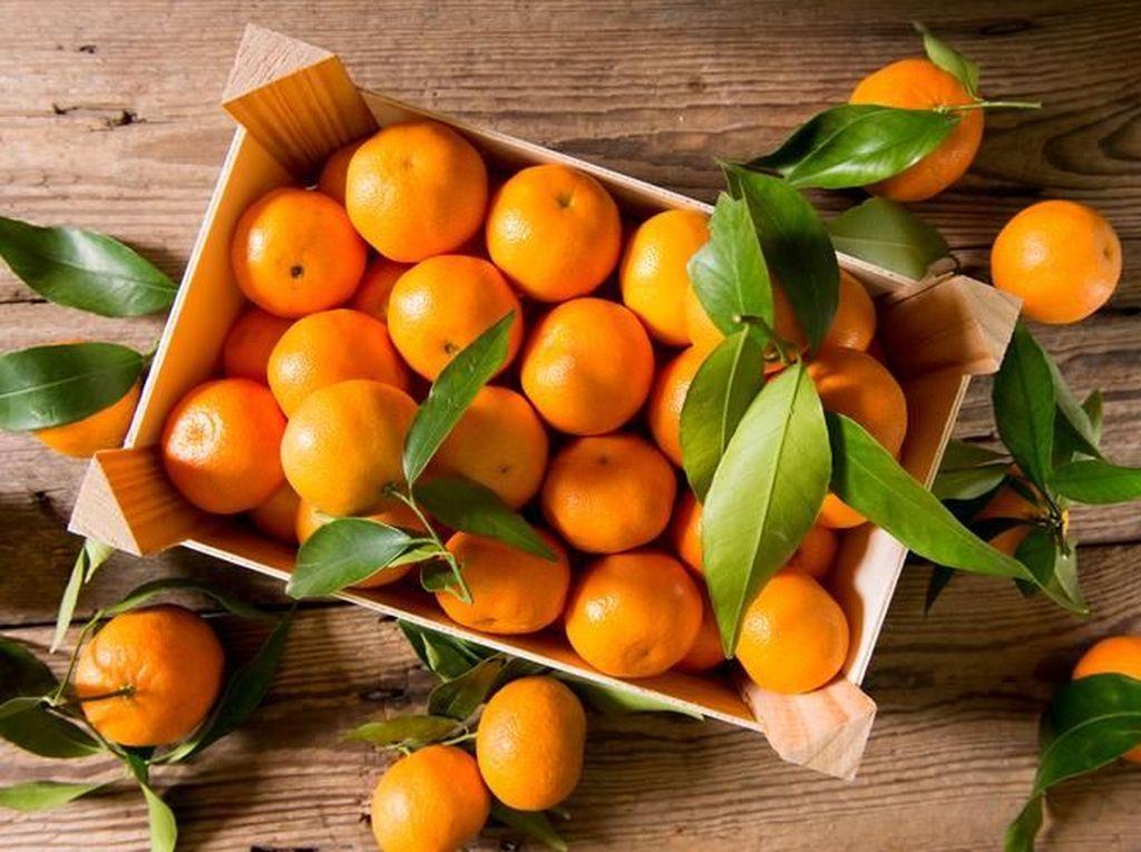Mana Lebih Dulu Dikenal? Kata Orange untuk Jeruk atau Oranye?