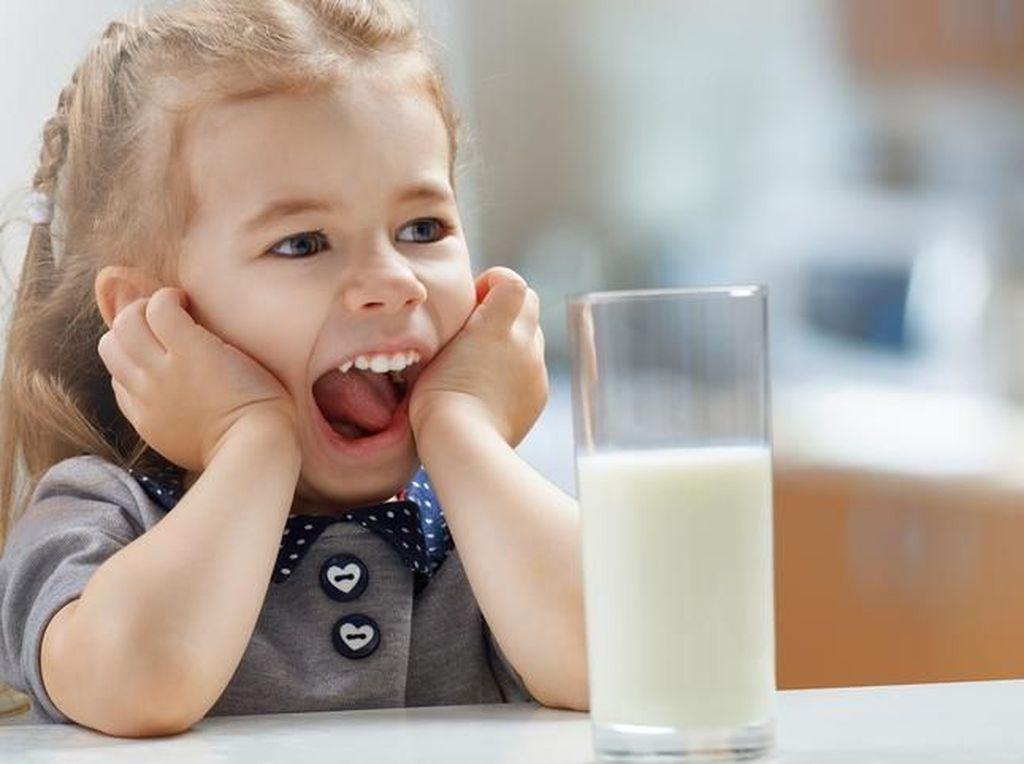 6 Tahap Pengolahan Susu Kemasan yang Menarik Diceritakan ke Anak