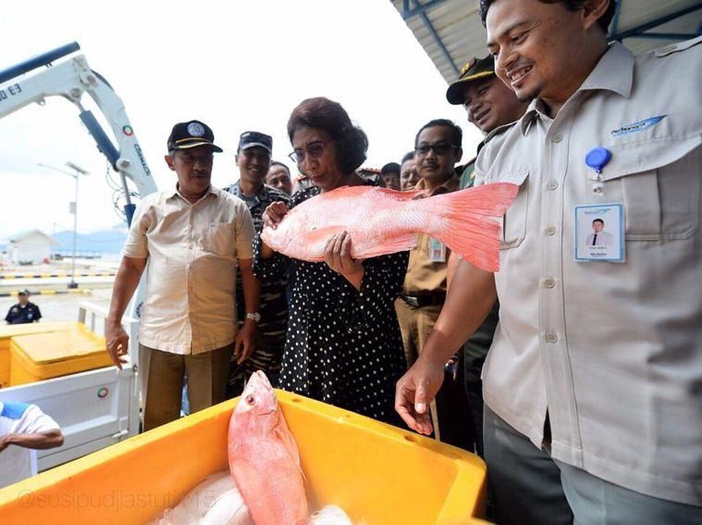 Momen Menteri Susi Saat Sarapan Ikan hingga Tenggelamkan Kapal