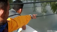 Instalasi PLN di Situ Cileunca Diperbaiki, Latihan Pelatnas Dayung Jalan Terus
