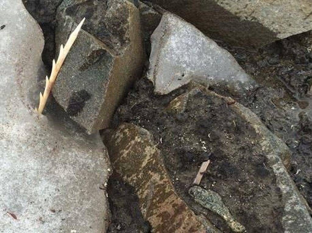 Foto: Langka, Panah Berusia 900 Tahun Ditemukan di Kanada