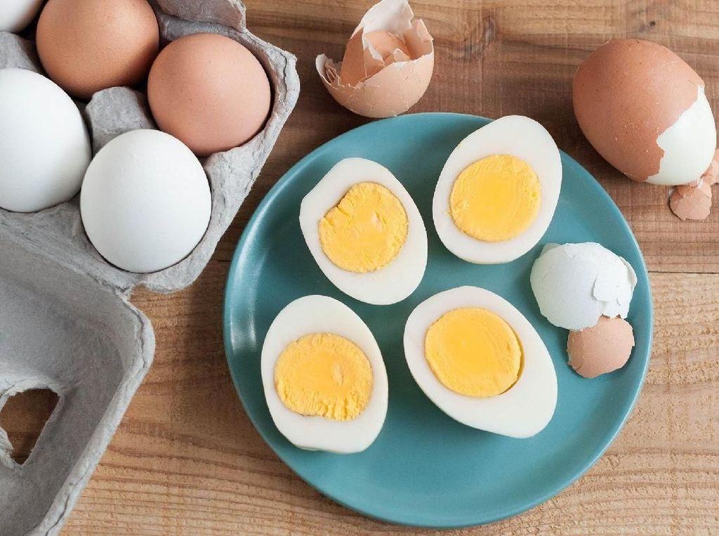 3 Hal Penting Tentang Telur Rebus yang Perlu Kamu Ketahui