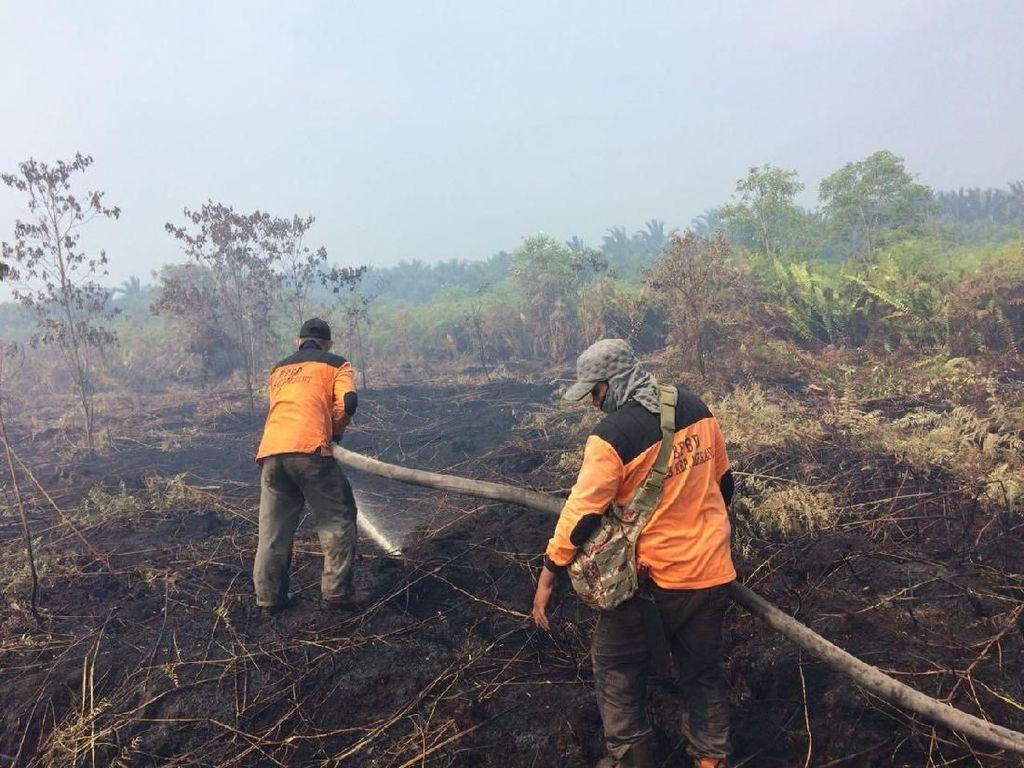 Kebakaran Lahan di Riau Capai 641 Hektare