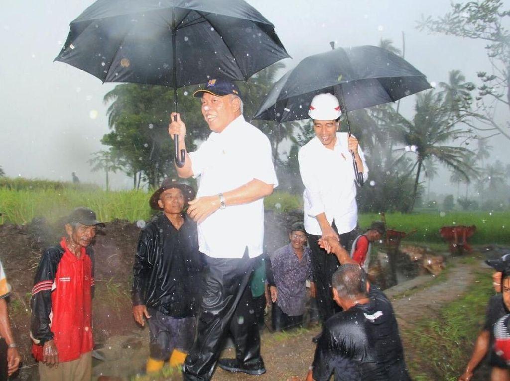 Gaya Jokowi Cek Program Padat Karya Tunai di Musim Hujan