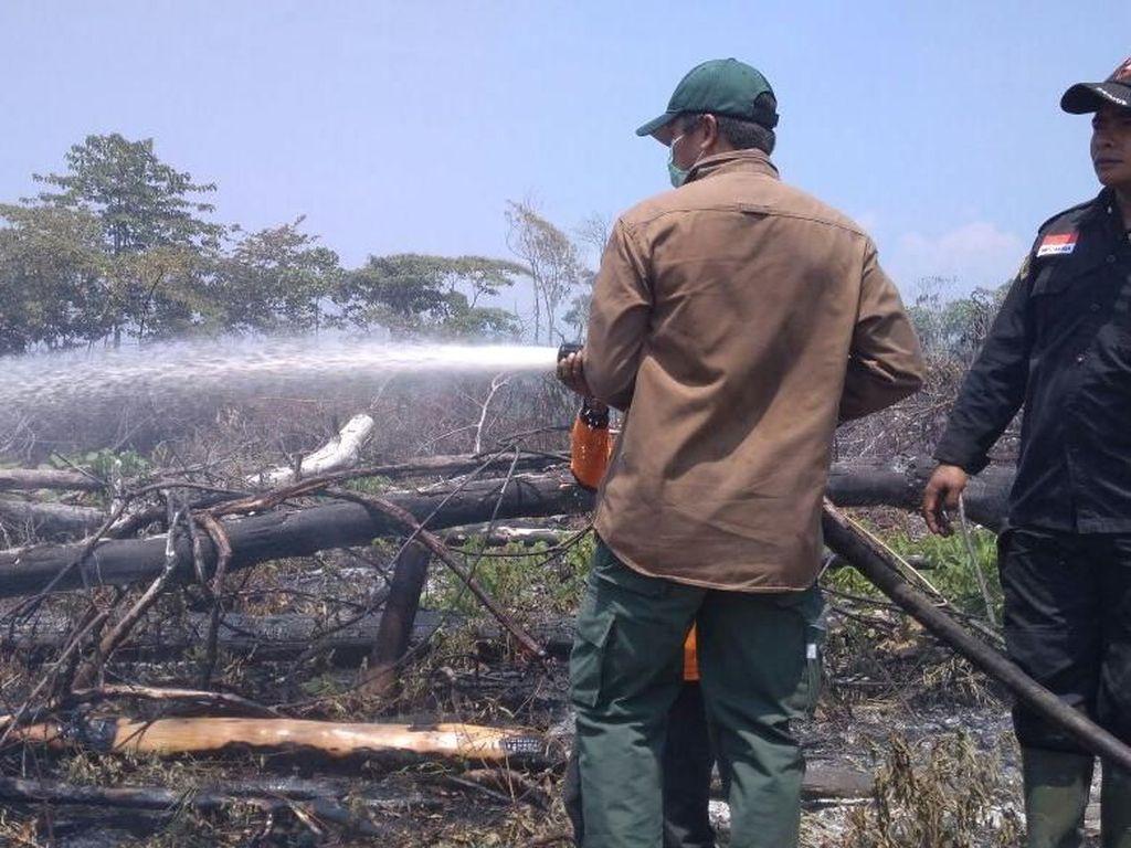 Masuki Kemarau, Waspada Kebakaran Hutan dan Lahan