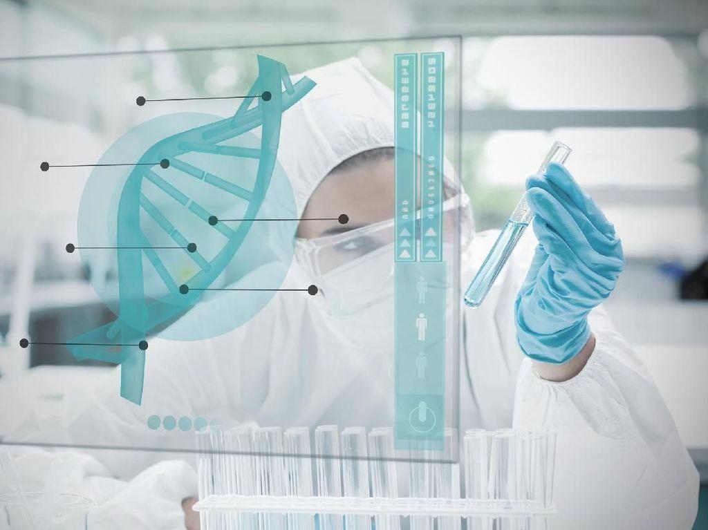 Anak Kembar Hasil Rekayasa Genetik Kemungkinan Punya Kemampuan Otak Lebih