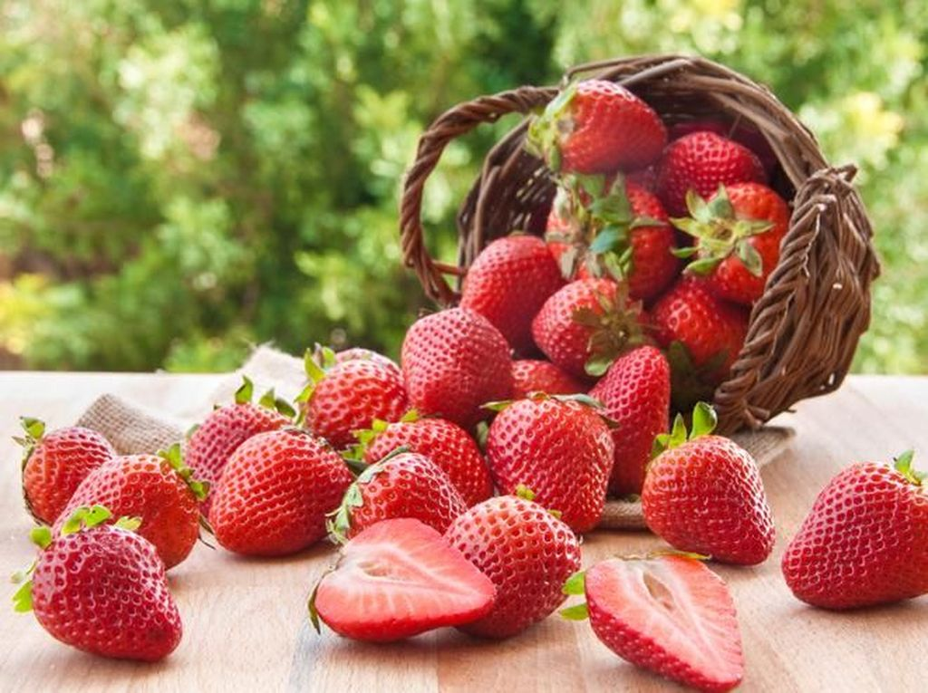 Sensasi Petik Buah Strawberry dari Kebunnya Langsung!