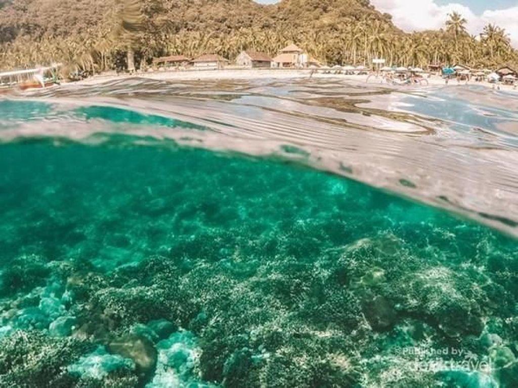 My Trip My Adventure: Snorkeling di Crystal Bay Bali